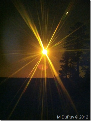 05 Annular solar eclipse through welders filter NR GRCA NP AZ by Mike's iphone (765x1024)