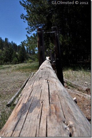 04e Fence rail by Riggs Spring Lookout Canyon FR226 Kaibab NF AZ (678x1024)