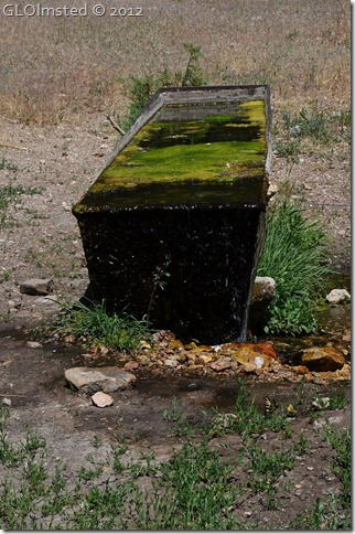 09e Water trough for Riggs Spring Lookout Canyon FR226 Kaibab NF AZ (678x1024)