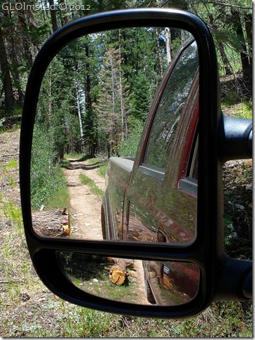 02 Side mirror view of log by truck Point Sublime Rd NR GRCA NP AZ (768x1024)