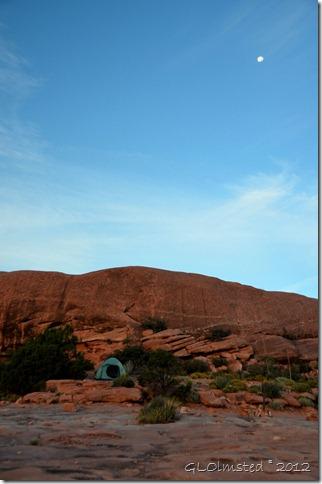 01 Moon above Toroweap GRCA NP AZ (678x1024)