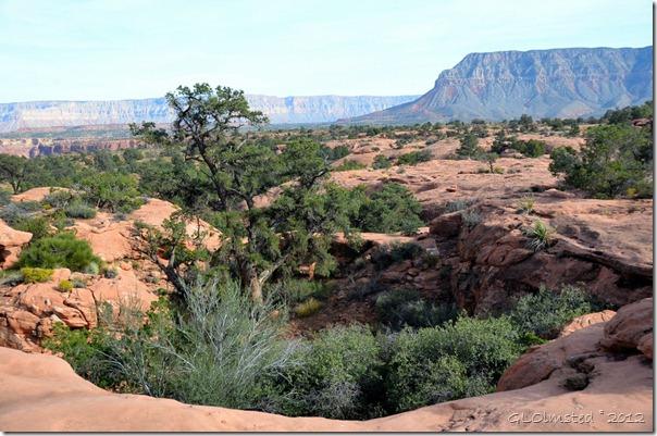 04 Esplanade views from camp area Toroweap GRCA NP AZ (1024x678)