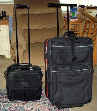Carry-on and suitcase