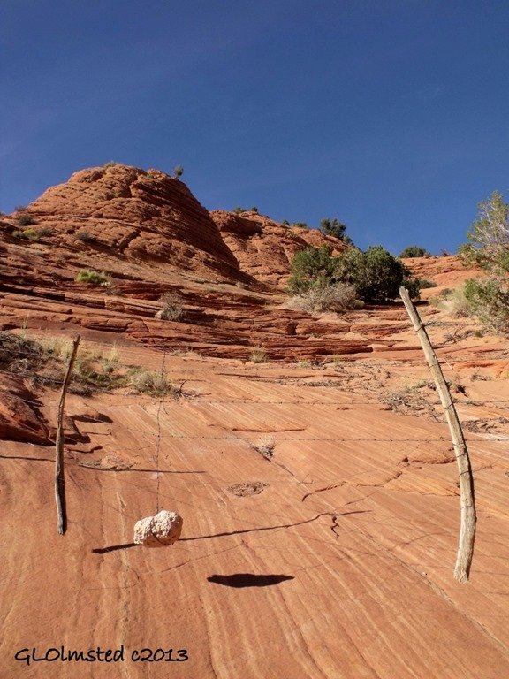 Rock weighted fence across sandstone along Wire Pass trail GRSE NM UT