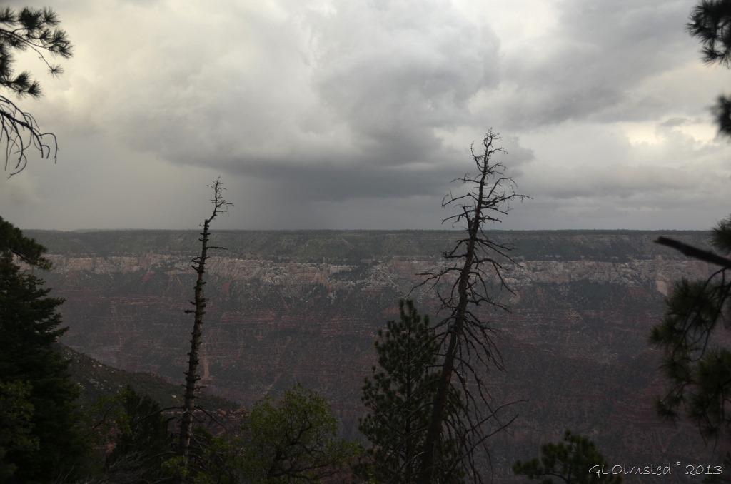 Stormy sky above Walhalla Plateau NR GRCA NP AZ