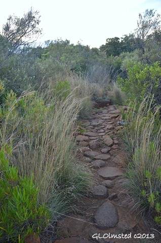Trail Camdeboo National Park Eastern Cape Graaff-Reinet South Africa
