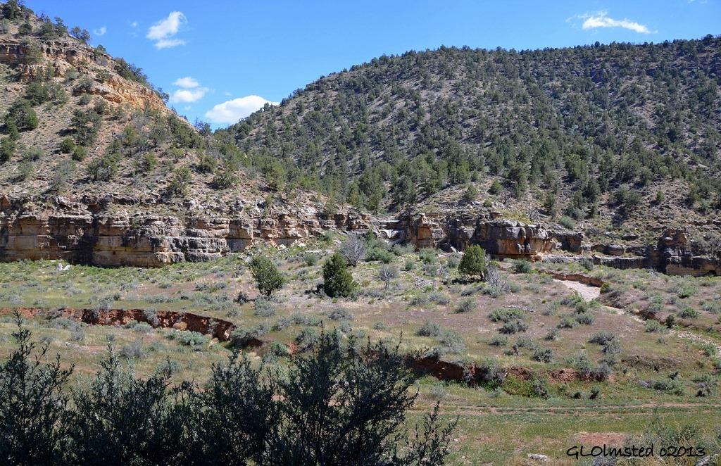 Side canyon along Snake Gulch trail Kaibab National Forest Arizona