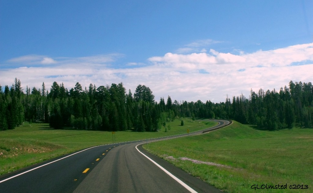 Meadow SR67 Kaibab National Forest Arizona