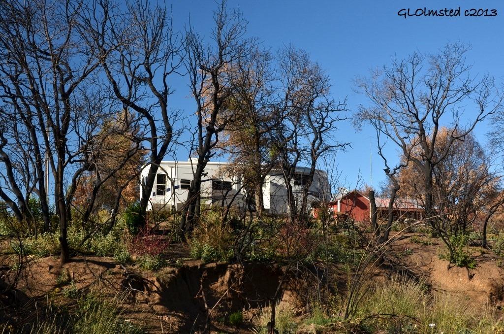 RV through burnt trees from the wash Yarnell Arizona