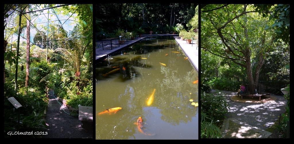 Botanical Garden Stellenbosch South Africa