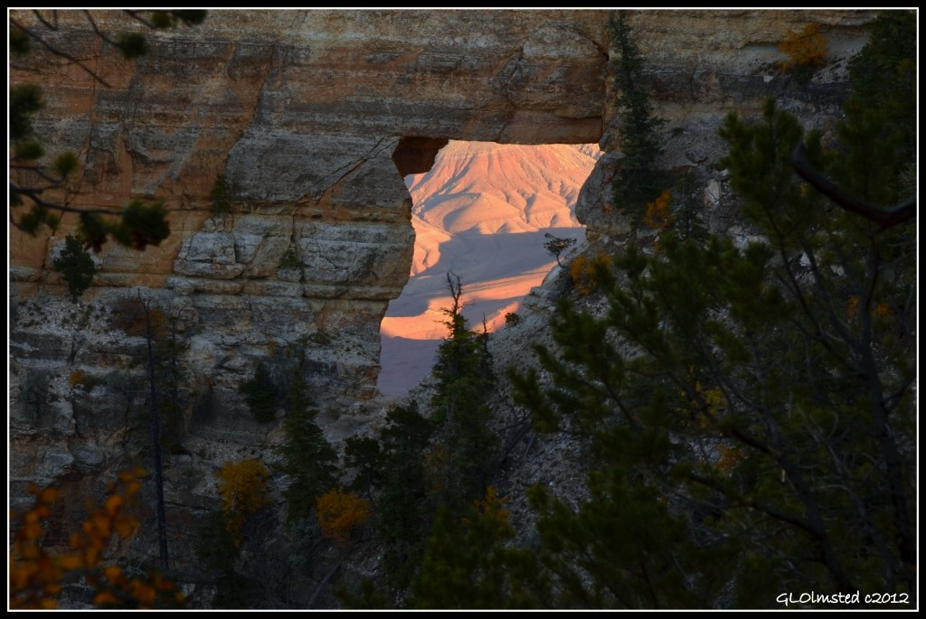 Shadows  in Angels window from Cape Royal trail North Rim Grand Canyon National Park Arizona