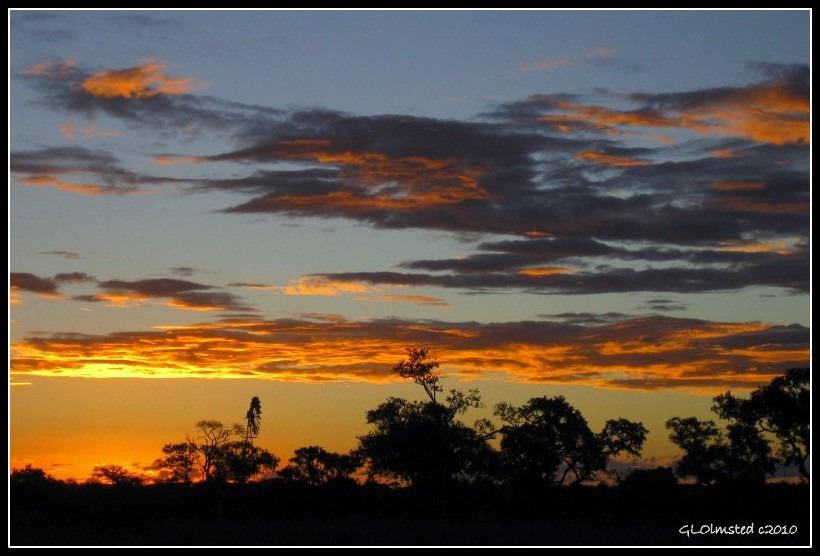 Sunset Night ride Kruger National Park Mpumalanga South Africa