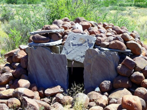 Hyena trap Karoo National Park South Africa
