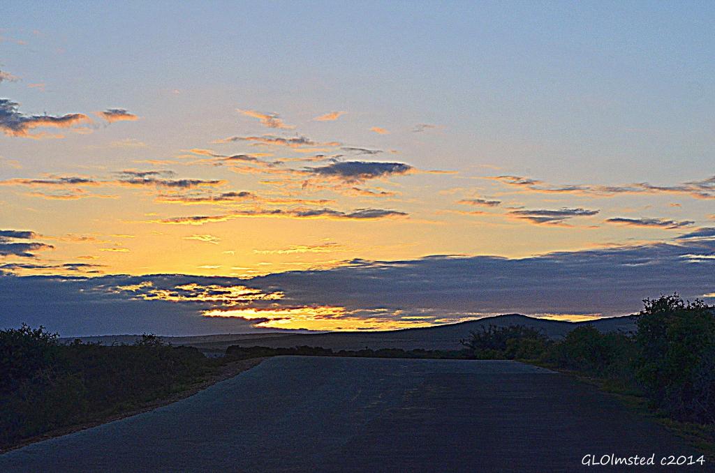 Sunrise Addo Elephant National Park South Africa