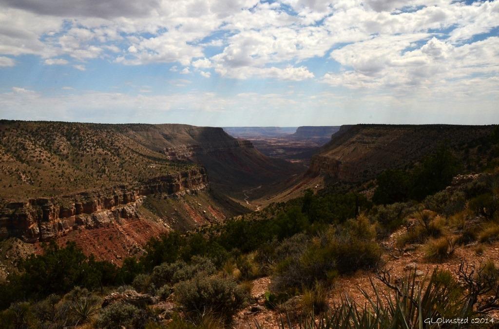 Jumpup canyon Kaibab National Forest Arizona