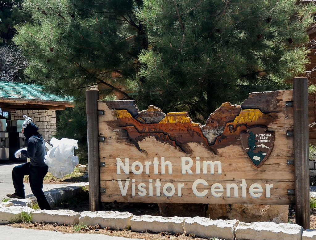 Squirrel Jeremy North Rim Grand Canyon National Park Arizona