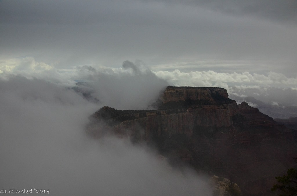 Fog around Wotans Throne Cape Royal North Rim Grand Canyon National Park Arizona