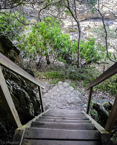Stairs down Waterfall trail Tsitsikamma National Park South Africa