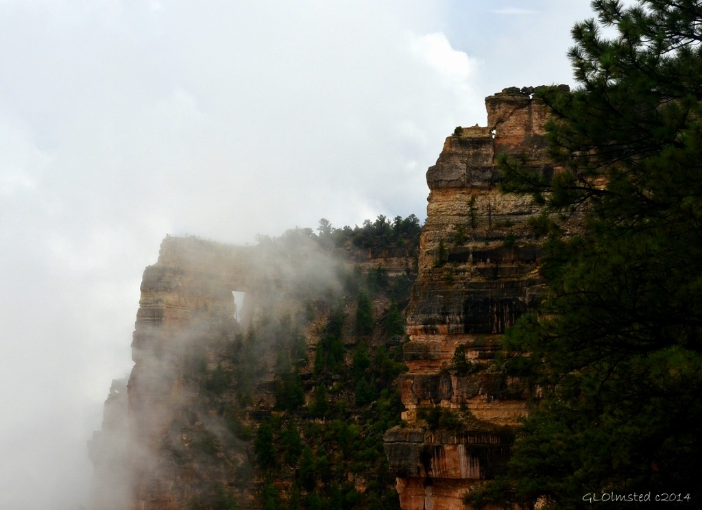 Foggy view of Angels Window Walhalla Plateau North Rim Grand Canyon National Park Arizona