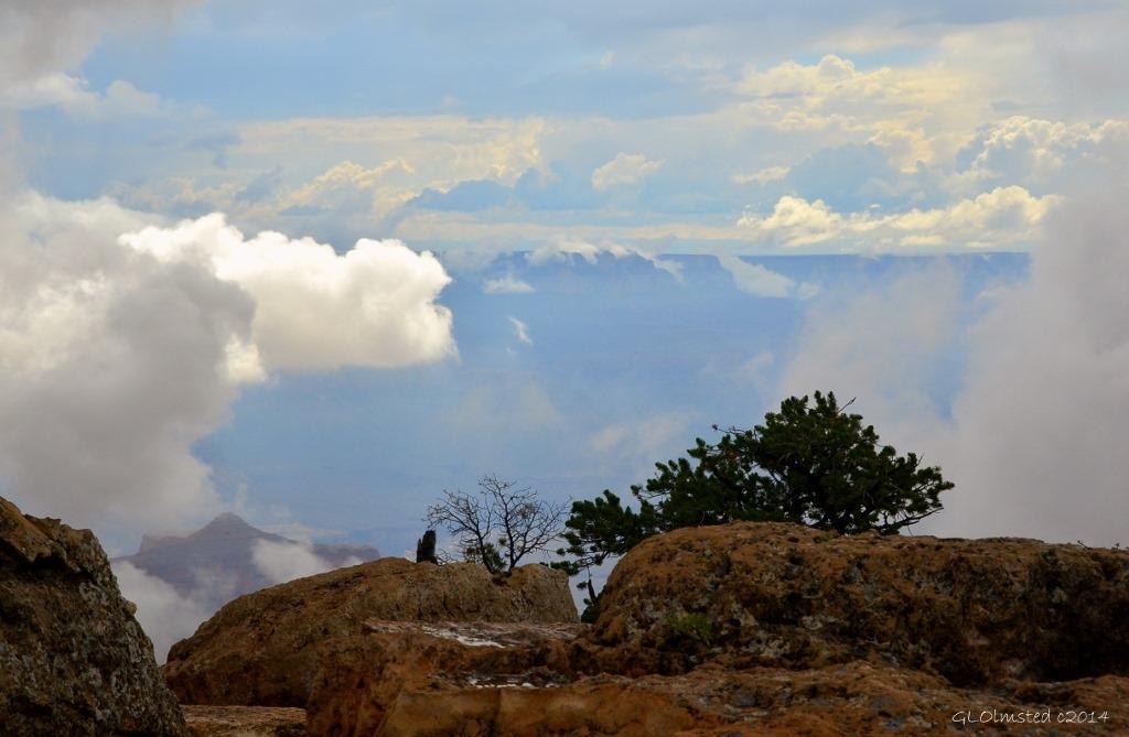 Cloudy view of canyon Cape Royal Walhalla Plateau North Rim Grand Canyon National Park Arizona