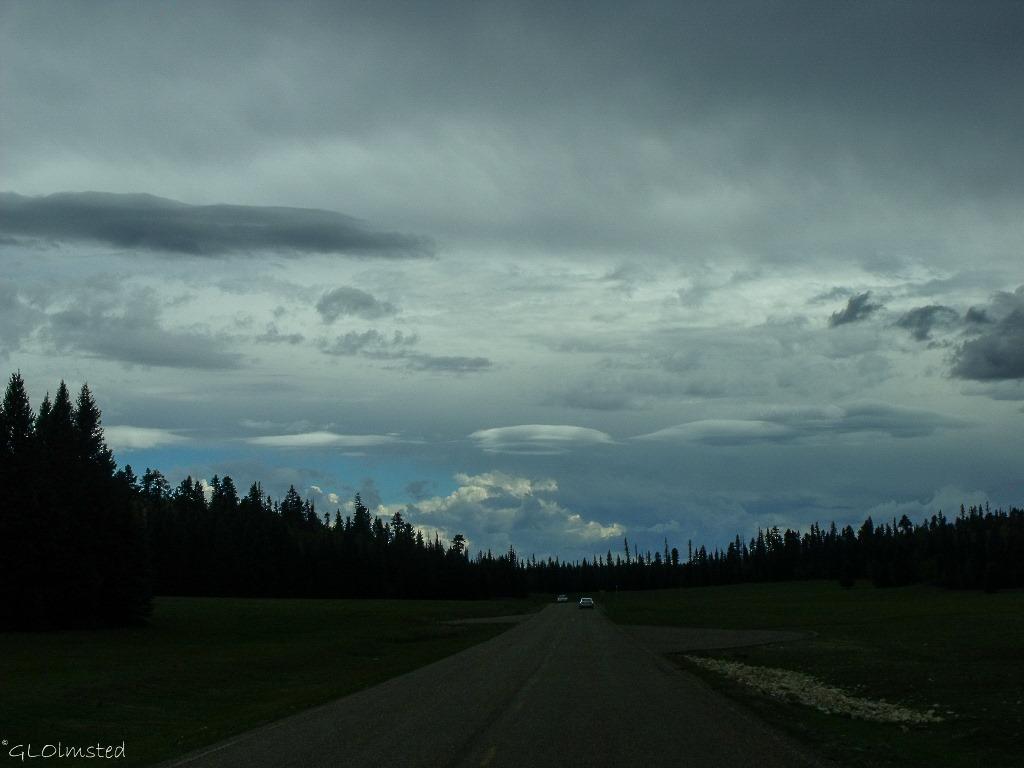 Stormy sky SR67 S Kaibab National Forest Arizona