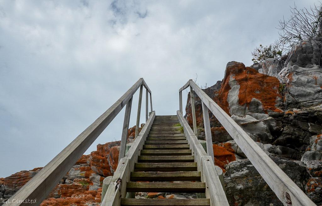 Stairs up Waterfall trail Tsitsikamma National Park South Africa