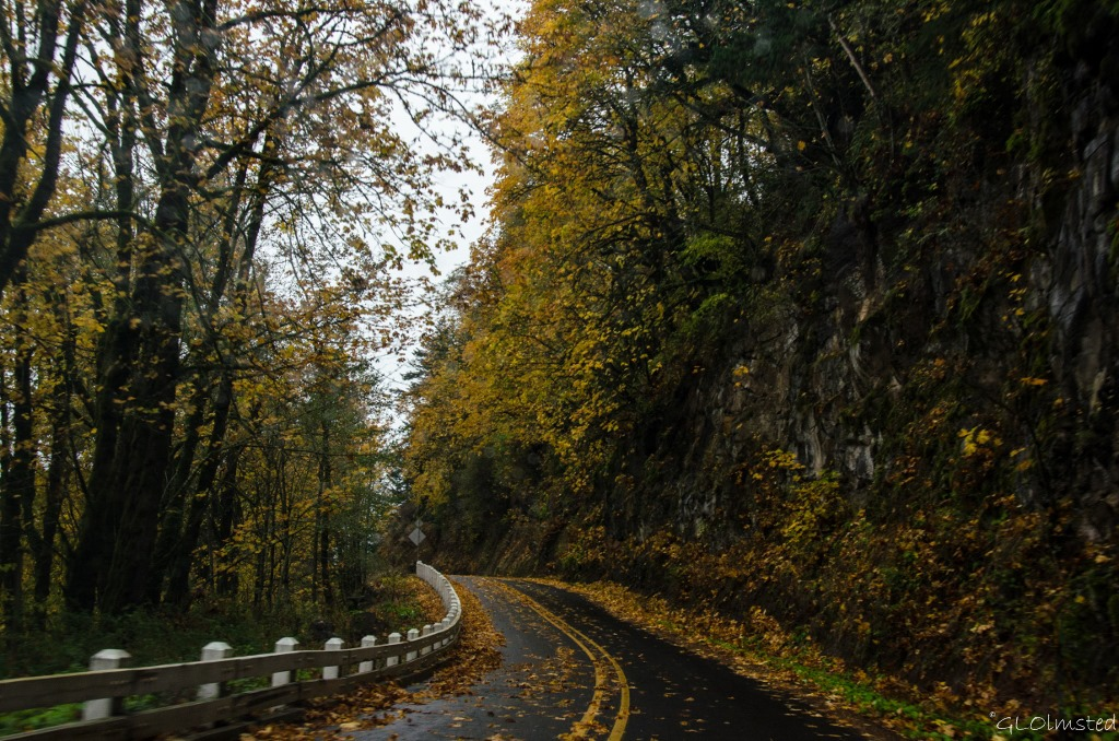 Fall colors Columbia River Gorge Historic Scenic Highway Oregon