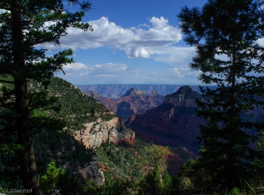 Deva temple & Oza Butte from Widforss trail North Rim Grand Canyon National Park Arizona