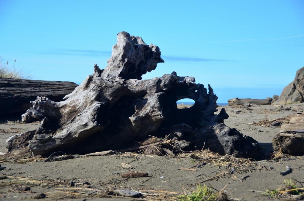 Driftwood Bandon Oregon