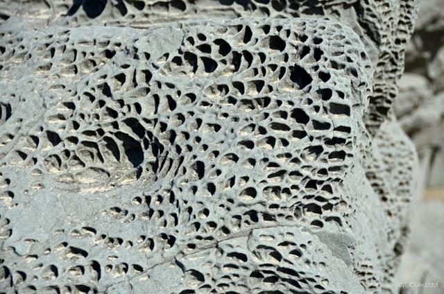 Honeycomb erosion on beach rock Bandon Oregon