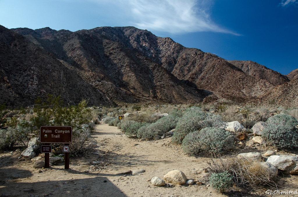 Palm Canyon trail head Anza-Borrego Desert State Park California