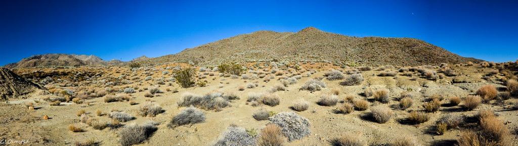 Desert along S3 Anza-Borrego Desert State Park California
