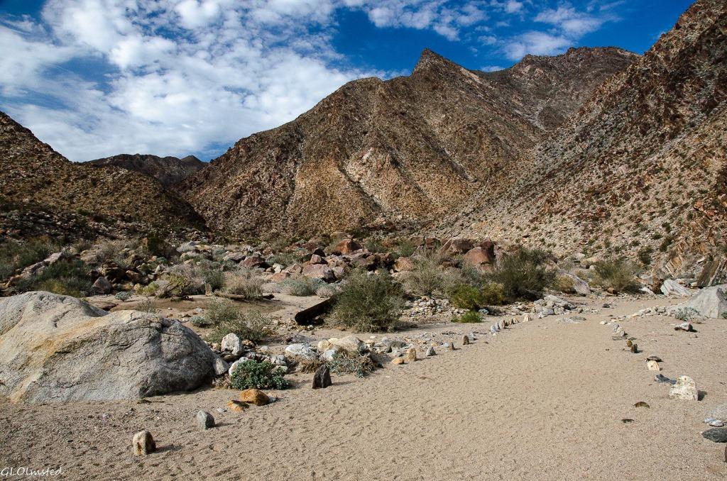 Palm Canyon trail Anza-Borrego Desert State Park California