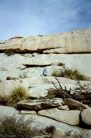 Gaelyn Joshua Tree National Park California