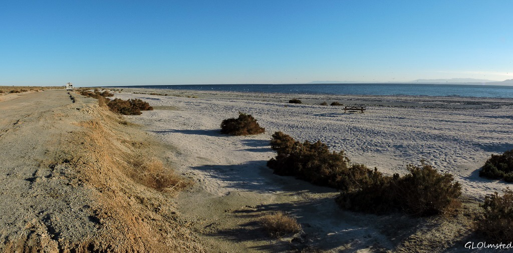 Corvina Beach Salton Sea SRA California