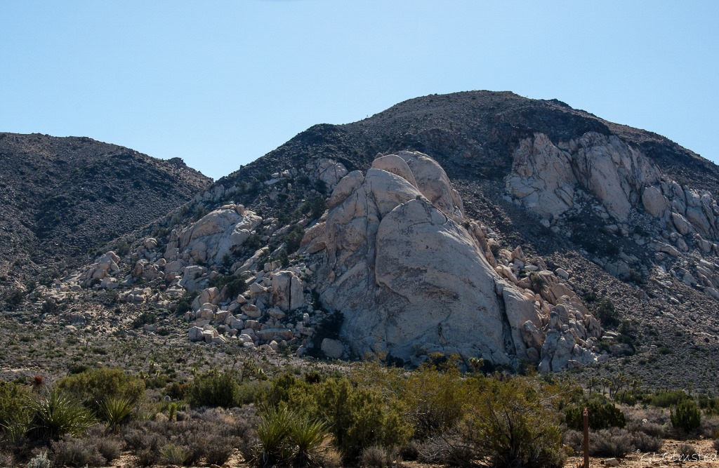 Saddle Rock Joshua Tree National Park California