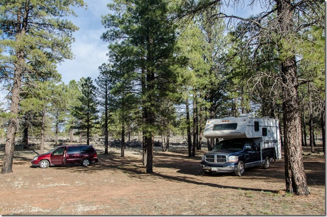 Camped Kaibab National Forest Arizona