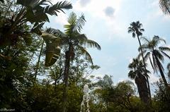Garden fountain Forever Resort Badplaas South Africa