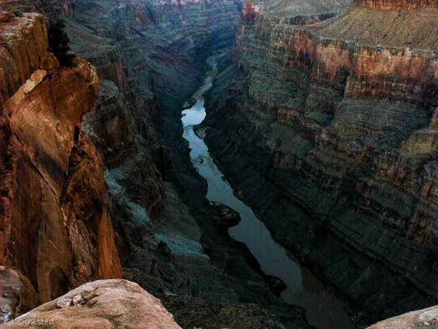 Colorado River up stream from Tuweep Grand Canyon National Park Arizona