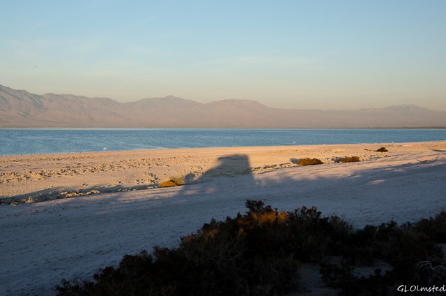 Morning light & truckcamper shadow Corvina Beach Salton Sea SRA California