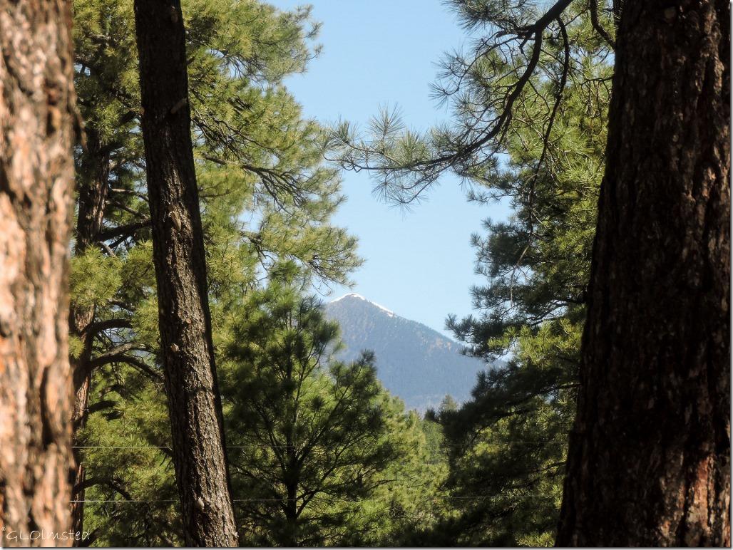 Snow on Mt Humphreys from Kit Carson RV Park Flagstaff Arizona