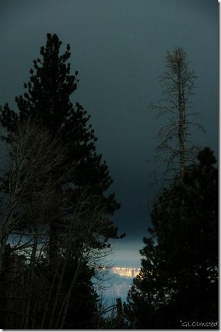 First light on South Rim thru pines North Rim Grand Canyon National Park Arizona
