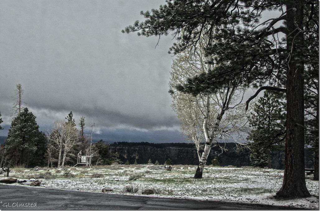 Snow & low clouds over Widforss Plateau thru RV window North Rim Grand Canyon National Park Arizona