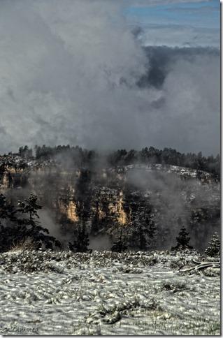 Snow & fog Widforss Plateau thru RV window North Rim Grand Canyon National Park Arizona