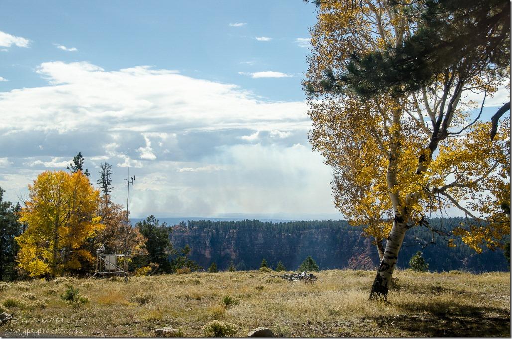 Fall aspen & Transept Canyon from RV window North Rim Grand Canyon National Park Arizona