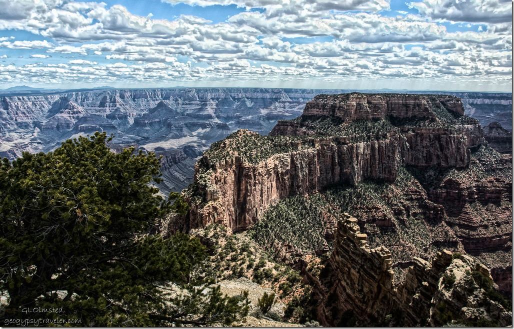 Wotans Throne from Cape Royal North Rim Grand Canyon National Park Arizona