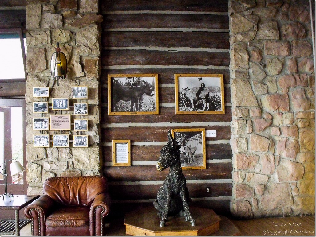 Brighty statue in Lodge sunroom North Rim Grand Canyon National Park Arizona