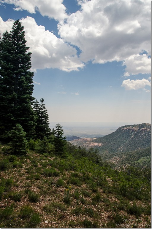 Marble Viewpoint from Arizona trail Kaibab National Forest Arizona