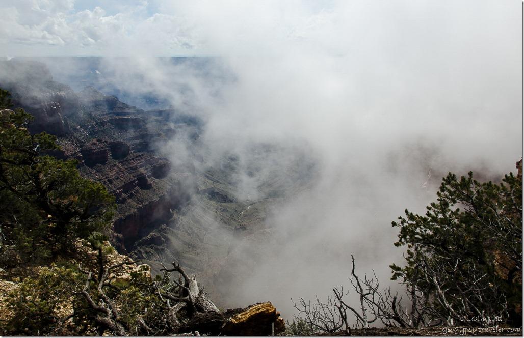 Inversion in canyon Cape Royal North Rim Grand Canyon National Park Arizona