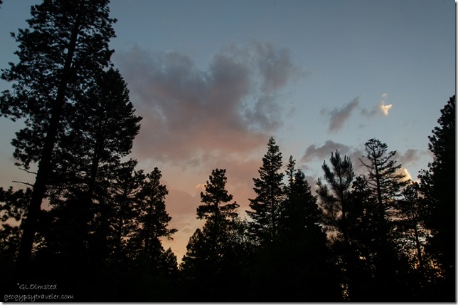 Smokey sunset from camp Kaibab National Forest Arizona